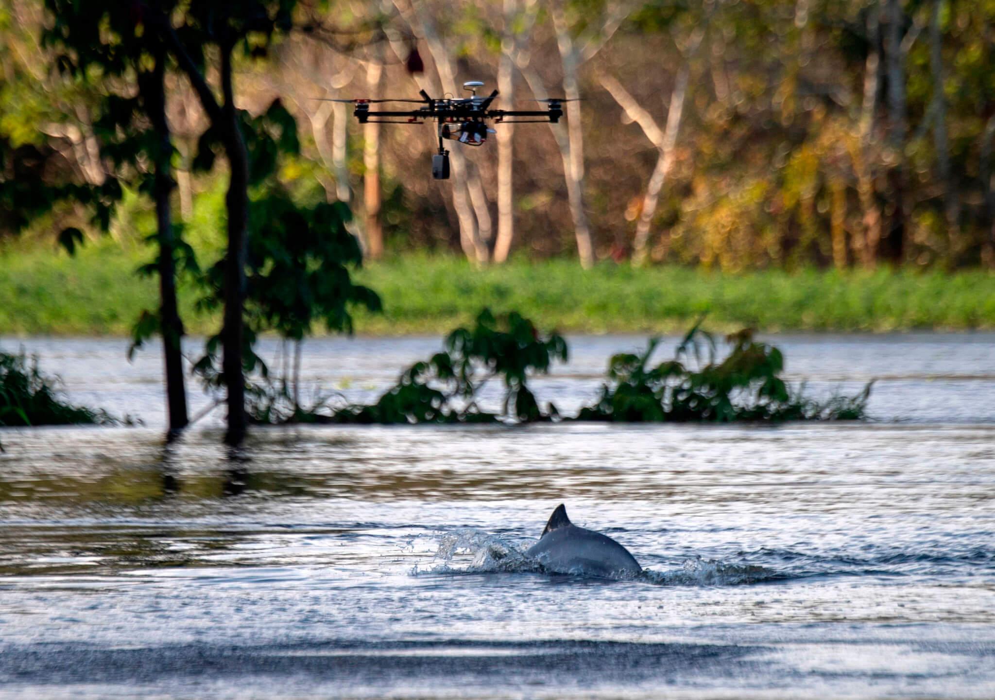 Aeronaves aliadas de la preservación animal