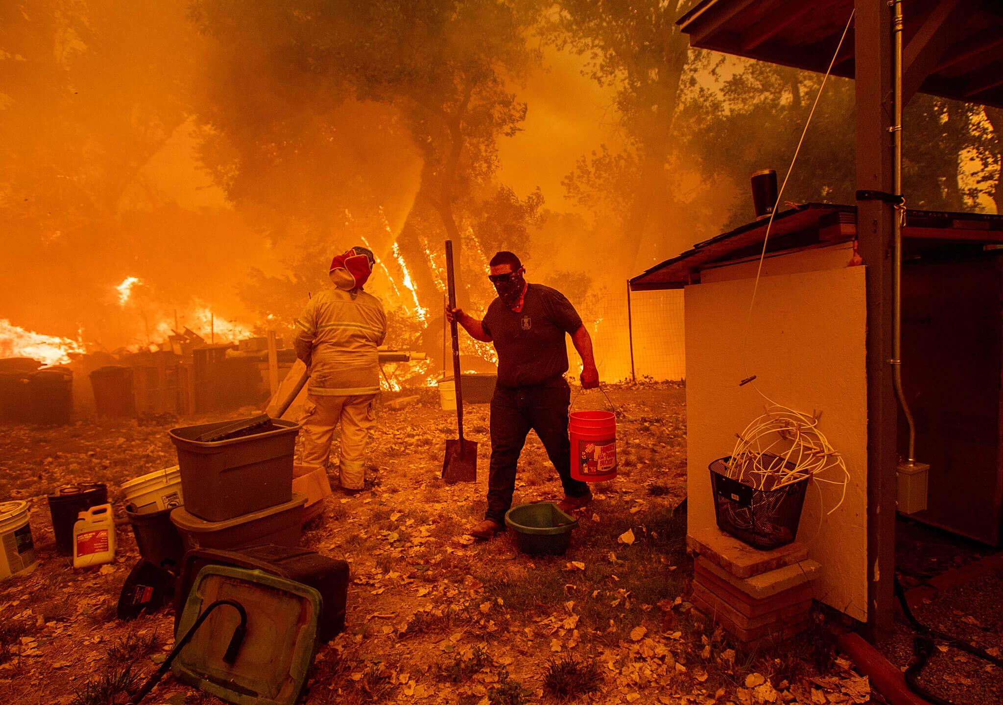 Los números de la destrucción en Mendocino