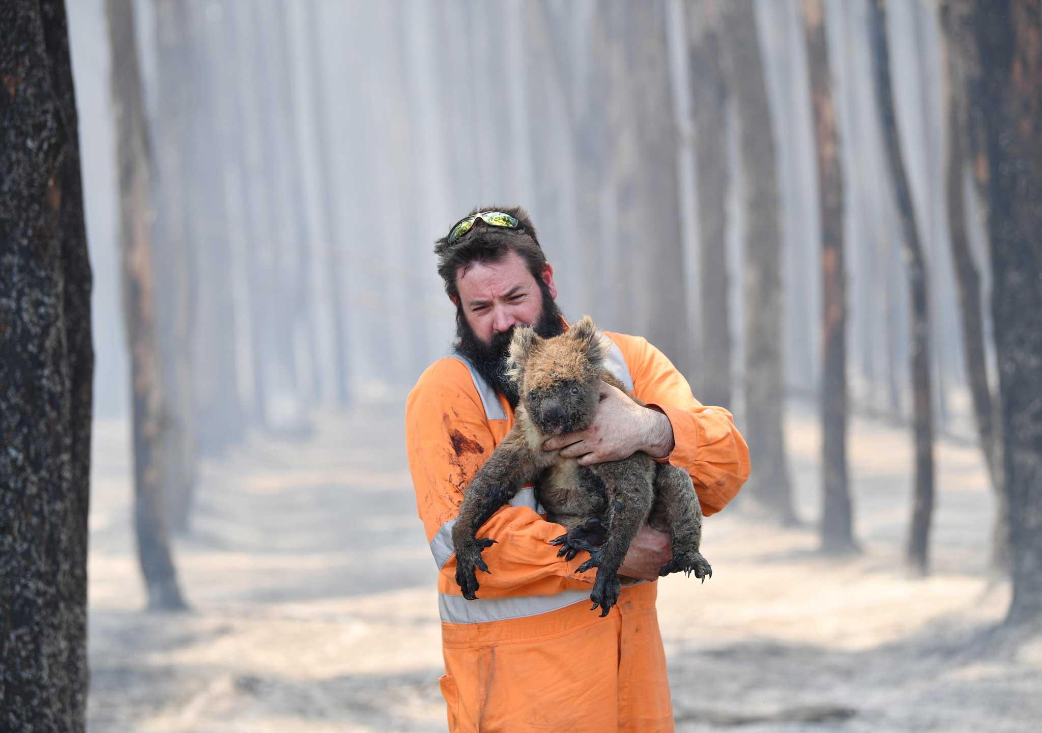Australia ha declarado el estado de desastre en las zonas afectadas por los incendios